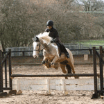 Monday - Jump Club (Intermediate)